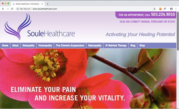 soule healthcare web design